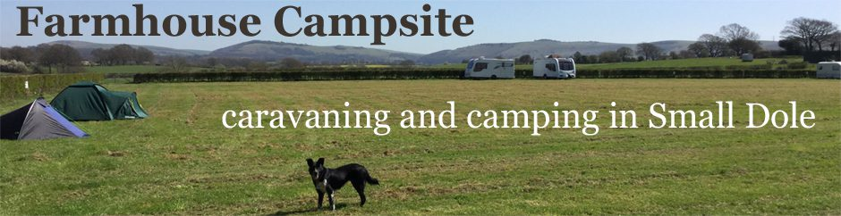farmhouse caravans and camping website banner with a view of the South Downs and a dog - home form home